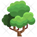 Green Forest Icon