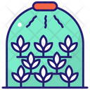 Green House House Ecology Icon