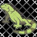 Green Iguana Icon