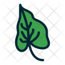 Leaf Green Leaf Leaves Icon