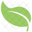 Ecology Plant Tree Icon