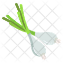 Green Oniin Herbal Spices Icon