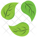 Green Recycle Leaves Icon