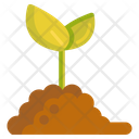 Green Sprout Sprout Baby Plant Icon