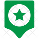 Green Star Army Icon