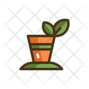 Green Tea Icon