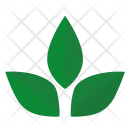 Tea Herbal Sign Icon