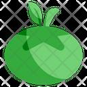 Green Tomato Icon