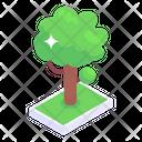 Greenery Tree Green Tree Icon