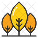 Cypress Trees Fir Icon