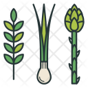 Greens Asparagus Onion Icon