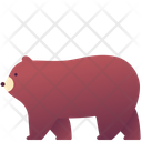 Zoo Animal Grizzly Icon