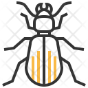 Ground Beetle Insect Icon
