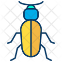 Ground Beetle Icon
