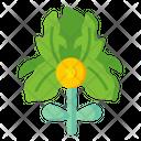 Ground Pine Icon