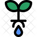 Groundwater Plant Natural Icon