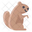 Groundhog Icon