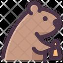 Groundhog Icon