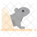 Groundhog Move Out Icon