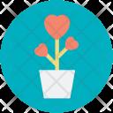 Grow Plant Love Icon