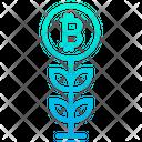 Growth Bitcoin Plant Plant Icon