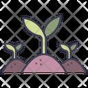 Plant Green Leaf Icon