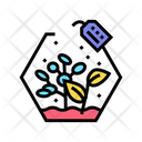 Growing Plants Color Icon