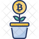 Growing Bitcoin Finance Icon