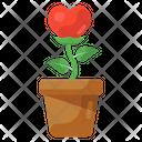 Growing Love Love Plant Valentine Plant Icon