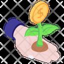 Dollar Plant Money Plant Business Development Icon