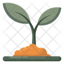 Growing Plant Ecology Nature Icon