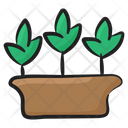 Growing Plant Eco Ecology Icon