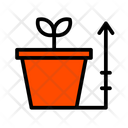 Grow Plant Growth Icon