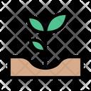 Plant Garden Nature Icon
