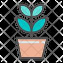 Growth Plant Icon