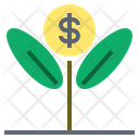 Develop Increase Growth Icon