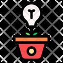Growth Plant Growth Idea Icon