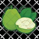 Guava Fruit Fresh Icon