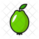 Fruit Nature Healthy Icon