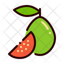 Fruit Food Guava Icon