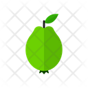 Guava Fruit Food Icon