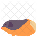 Gatsby Rat Guinea Pig Icon