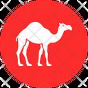 Gulf Camel Icon