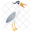 Gull Seagull Seabird Icon