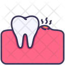 Tooth Dental Gum Icon
