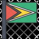 Guyana Guyanese Country Icon
