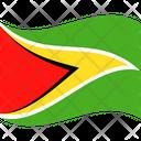 Flag Country Guyana Icon