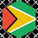 Guyana Flag World Icon