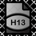 H 13 File Icon