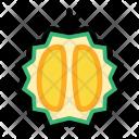 Half Durian Fruit Icon